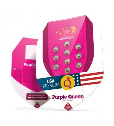 Purple Queen RQS